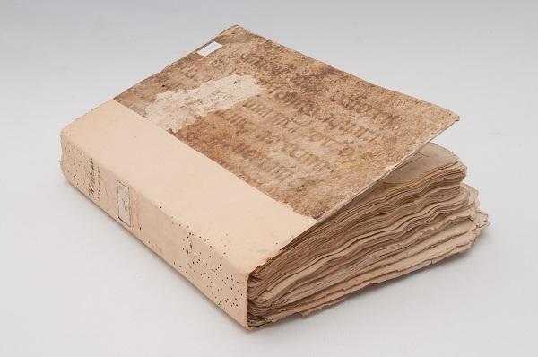 """Knjiga """"Herbario Nuovo"""" prije konzervatorsko-restauratorskih radova."""