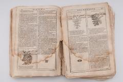 """Listovi knjige """"Herbario Nuovo"""" prije konzervatorsko-restauratorskih radova."""