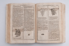 """Listovi knjige """"Herbario Nuovo"""" nakon konzervatorsko-restauratorskih radova."""
