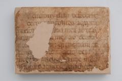"""Prednja korica knjige """"Herbario Nuovo"""" nakon konzervatorsko-restauratorskih radova."""