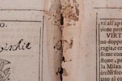 Biološka oštećenja knjižnog bloka.
