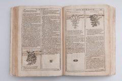 "Dovršeni konzervatorsko-restauratorski radovi na knjizi ""Herbario Nuovo""."