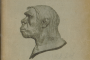 Gorjanović Kramberger, Dragutin. Pračovjek iz Krapine