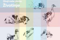 """Naslovnica bojanke Nacionalne i sveučilišne knjižnice u Zagrebu """"Obojite naše zbirke – Životinje 2"""" izrađena po uzoru na godišnju kampanju knjižnice njujorške medicinske akademije (The New York Academy of Medicine) #ColorOurCollections, namijenjenu promicanju korištenja digitalne kulturne baštine za kreativnu razonodu i učenje."""