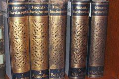 """Hrvatska enciklopedija"", pet svezaka tiskanoga izdanja. Izvor: http://tinyurl.com/h9qxcun."